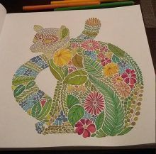 best coloring pencils for adult coloring books