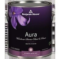 benjamin moore internal paint aura