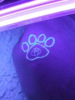 UV tattoo of bear paw