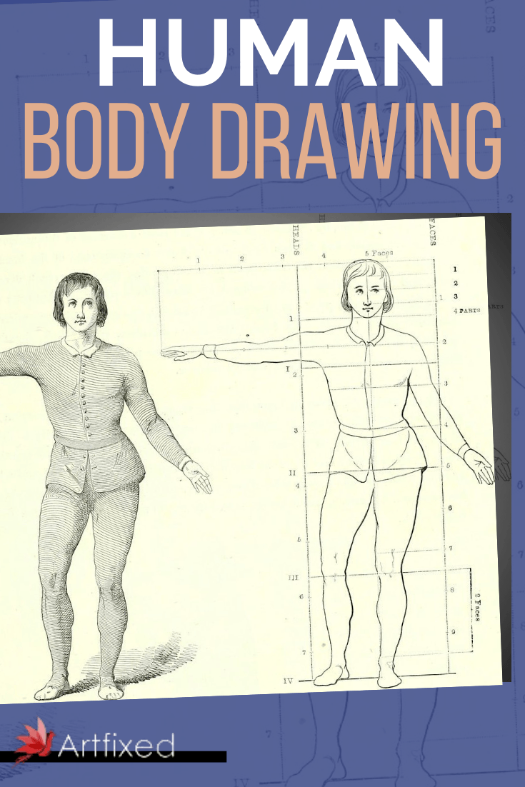 If you have attempted drawing the human body, you know it is more than an evolved stick figure. You must have the correct proportions, the muscle shape, and take into account the many variations of the human form. In nature, there are no other species with quite so many different shapes and colors, and creating a realistic form can be a challenge.#human #body #drawing #art